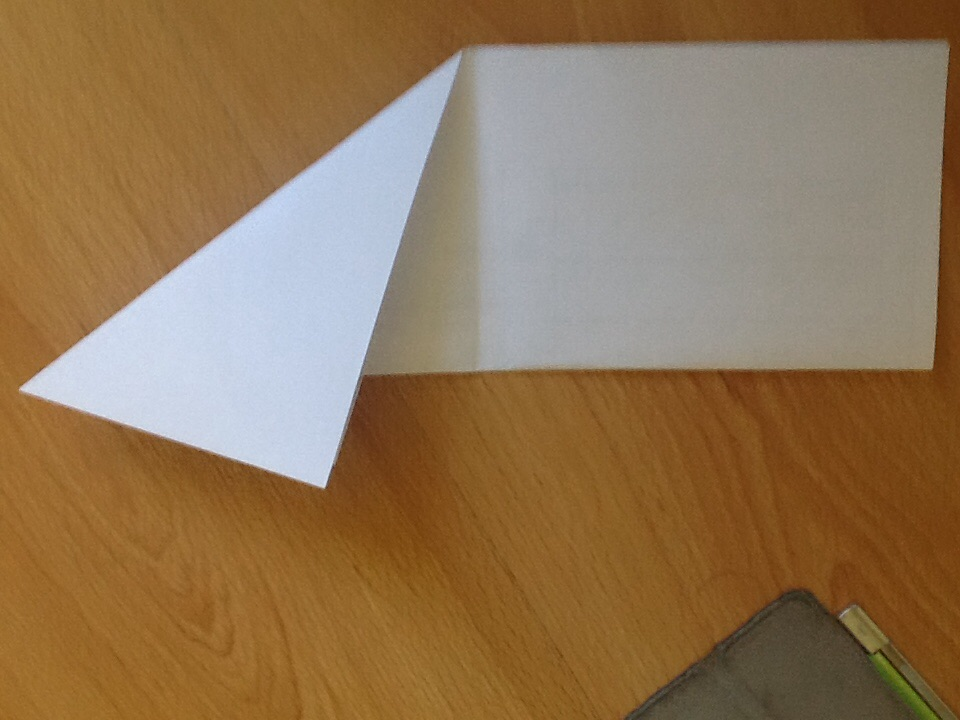 Picture of First Folds First