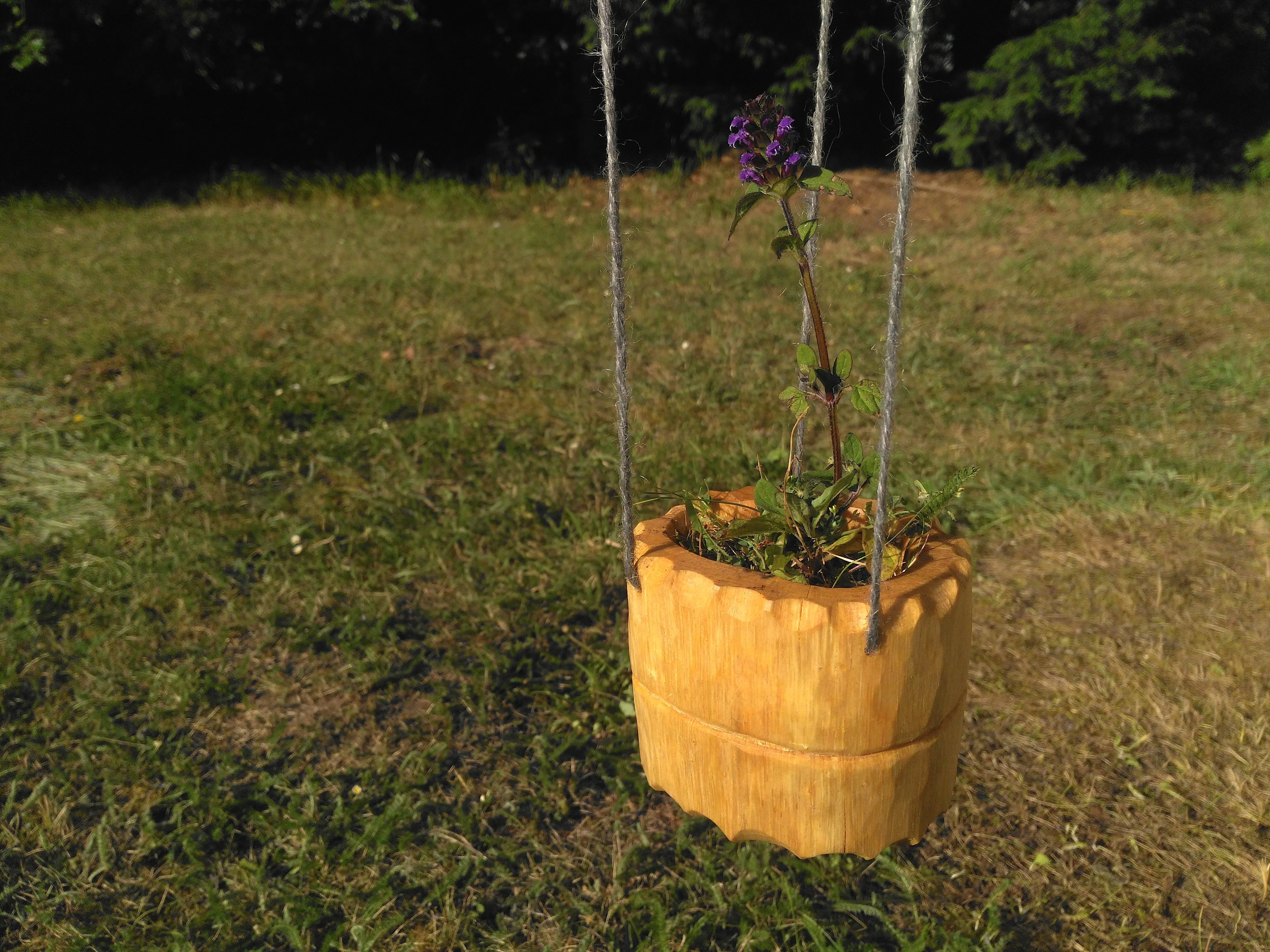 Picture of Shrink Pot Planter
