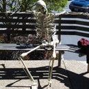 Skeleton Project