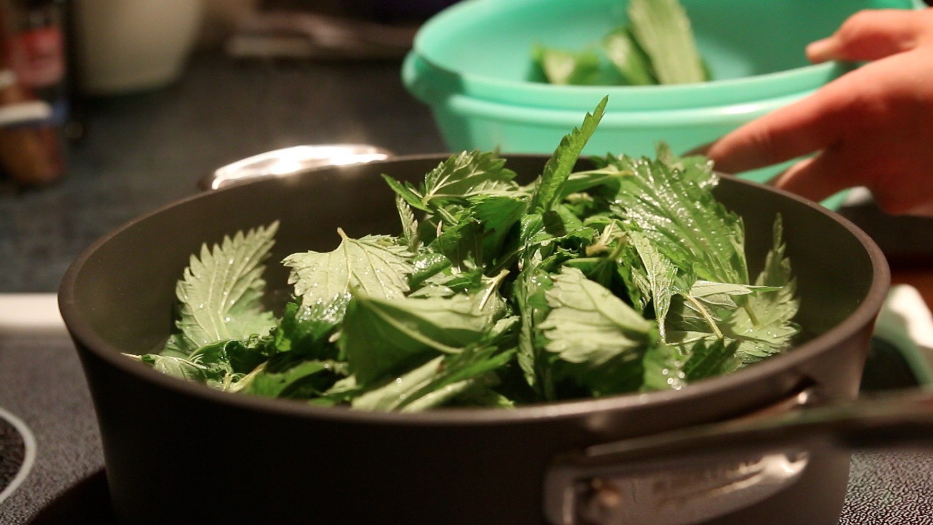 Picture of ​Prep and Cook Nettles