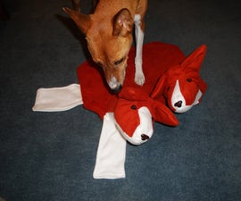 How to Make a Costume for a Dog