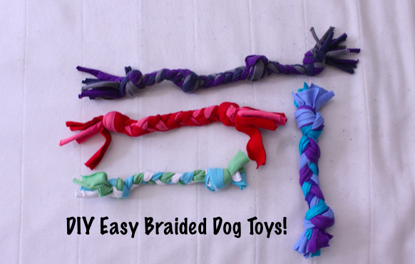 Picture of Easy Recycled Braided Dog Toys