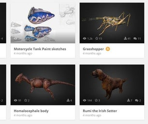 Model Animals and Bugs in Your Browser