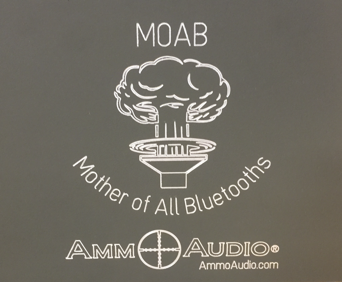 Picture of Ammo Can Speaker Insanity: the MOAB