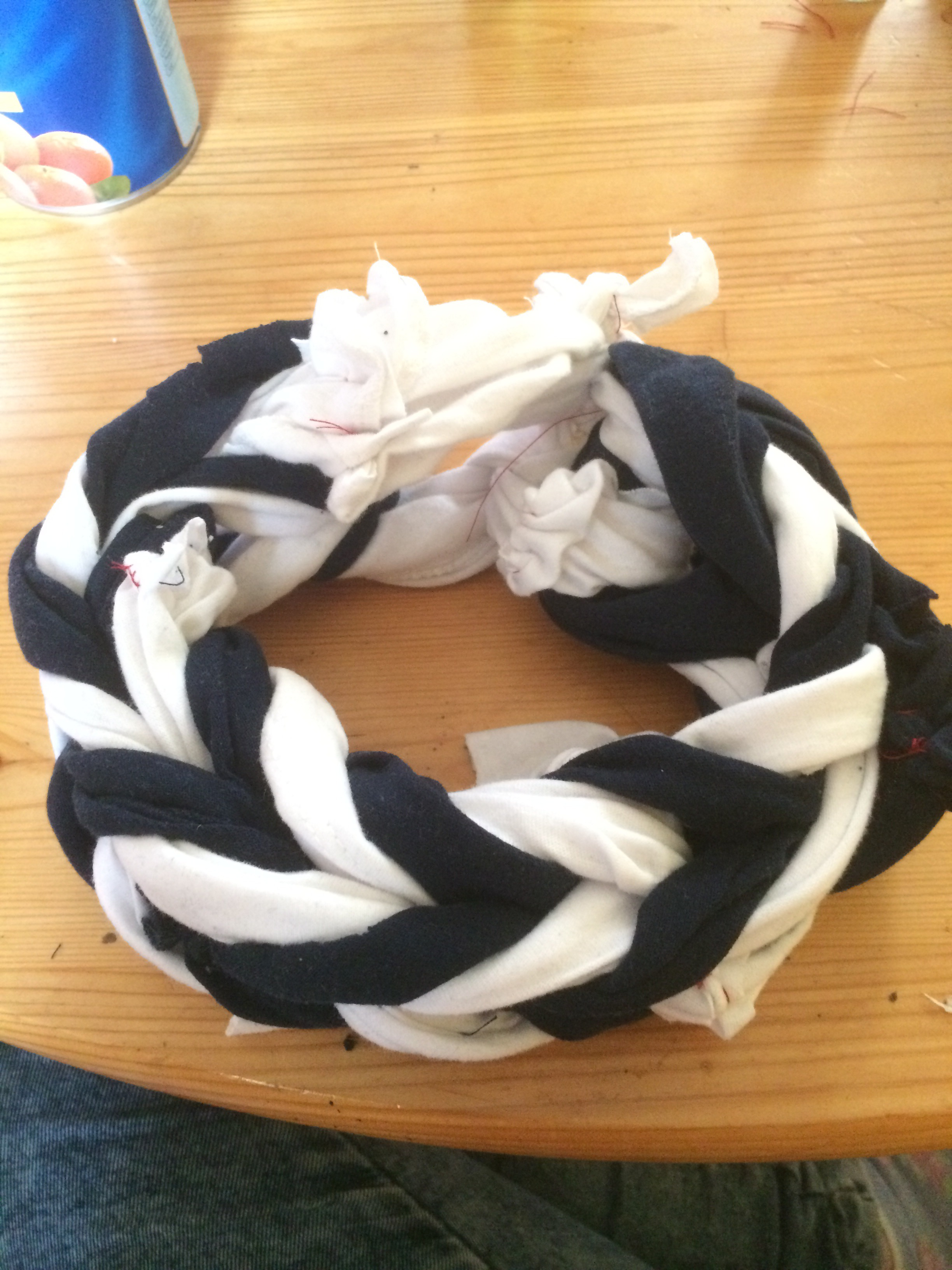 Picture of Fishtail Ring Dog Toy