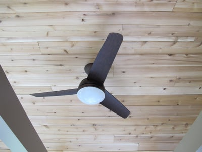 Painting and Ceiling Fan