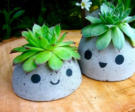 Cute Concrete Planter