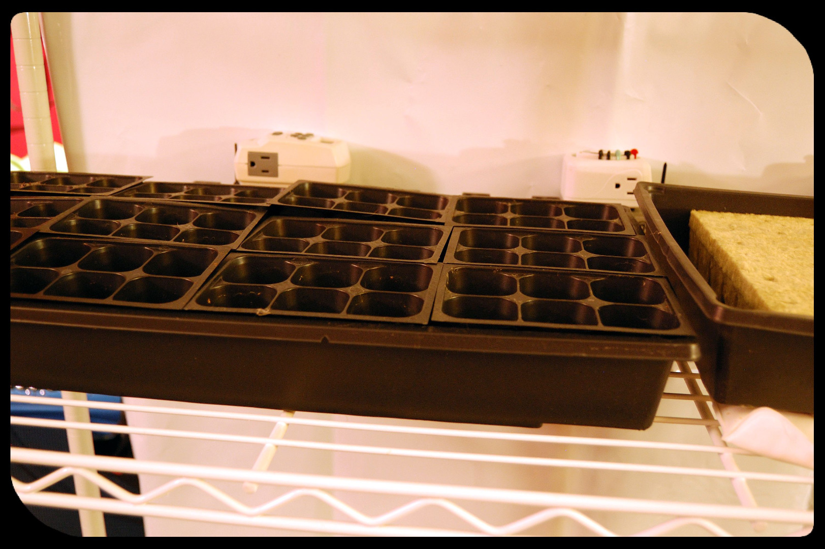 Picture of Sample Configuration 1 - Seedlings