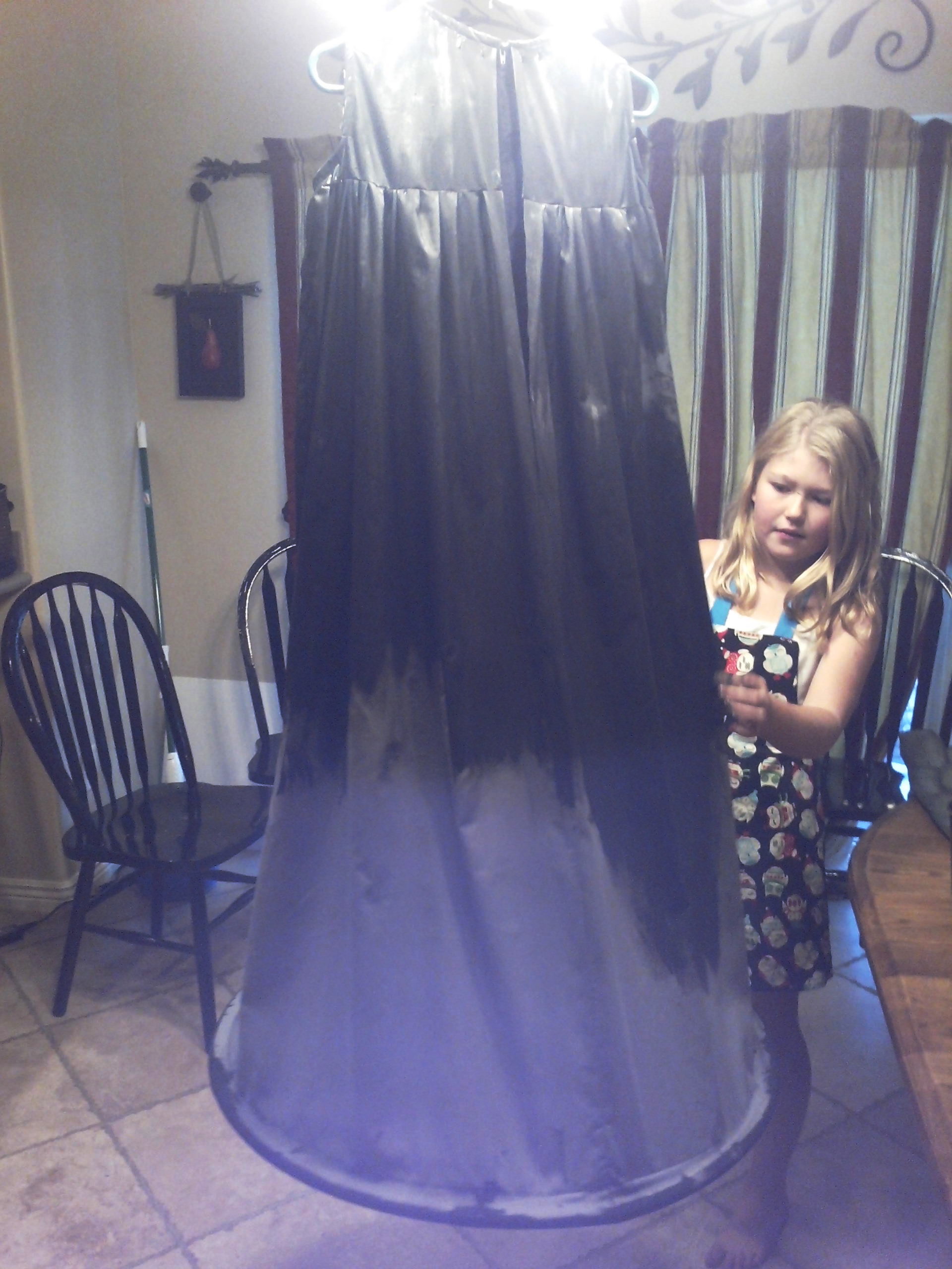 Picture of Step 3: Paint the Dress