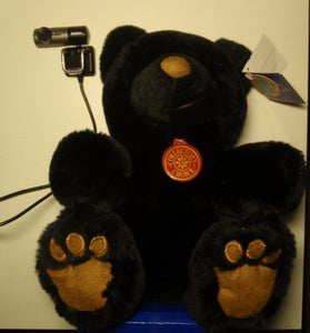 Acquire a Stuffed Bear and Camera
