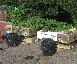 Best damn organic recycled solar pump hydroponic system