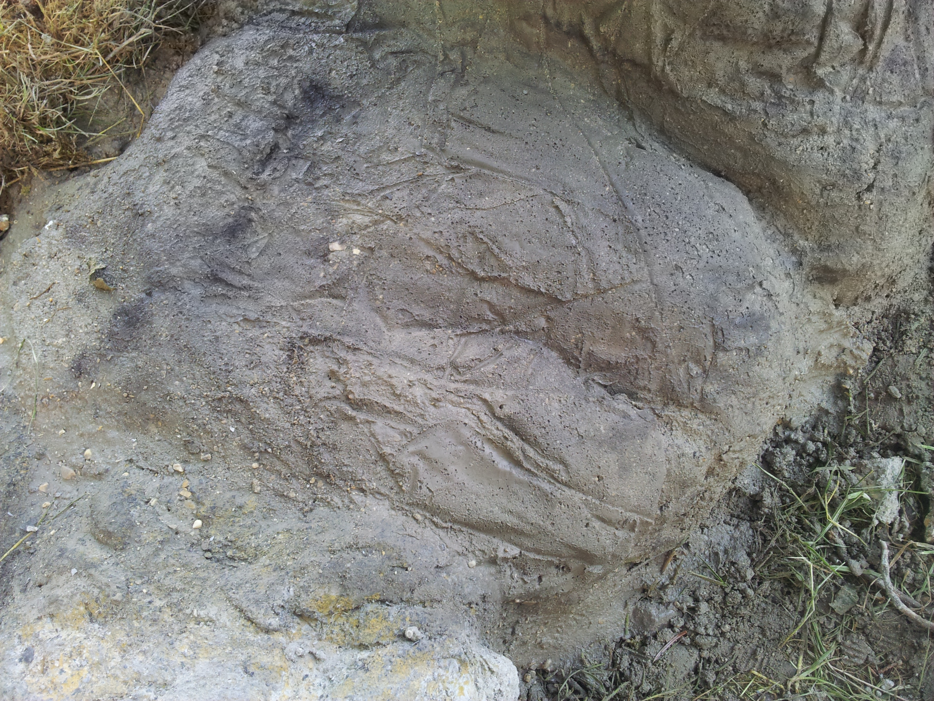 Picture of Define the Rock.