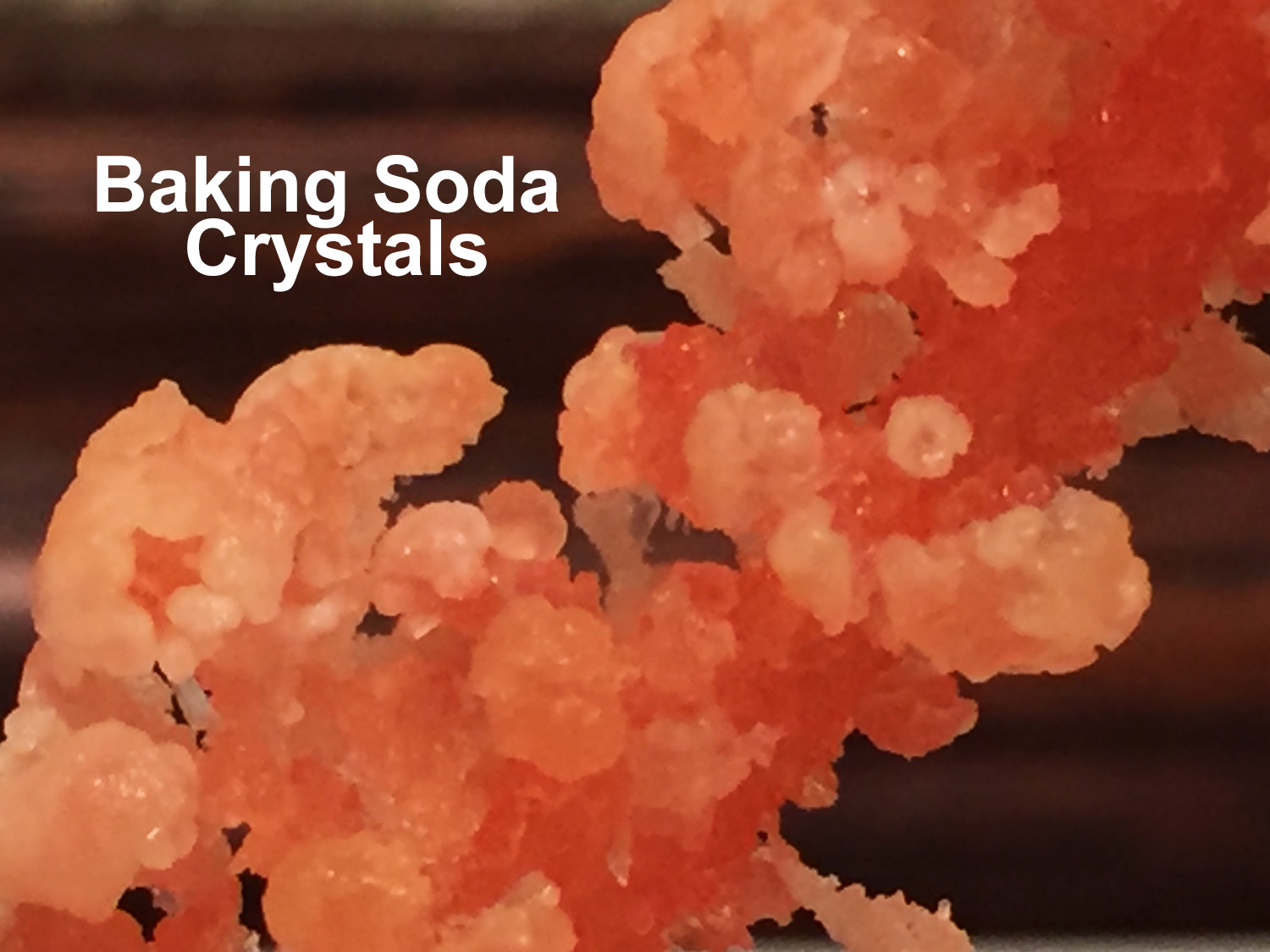 Picture of Baking Soda Crystals