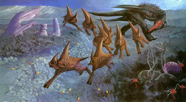 Picture of Planimals (Also Known As Plents)