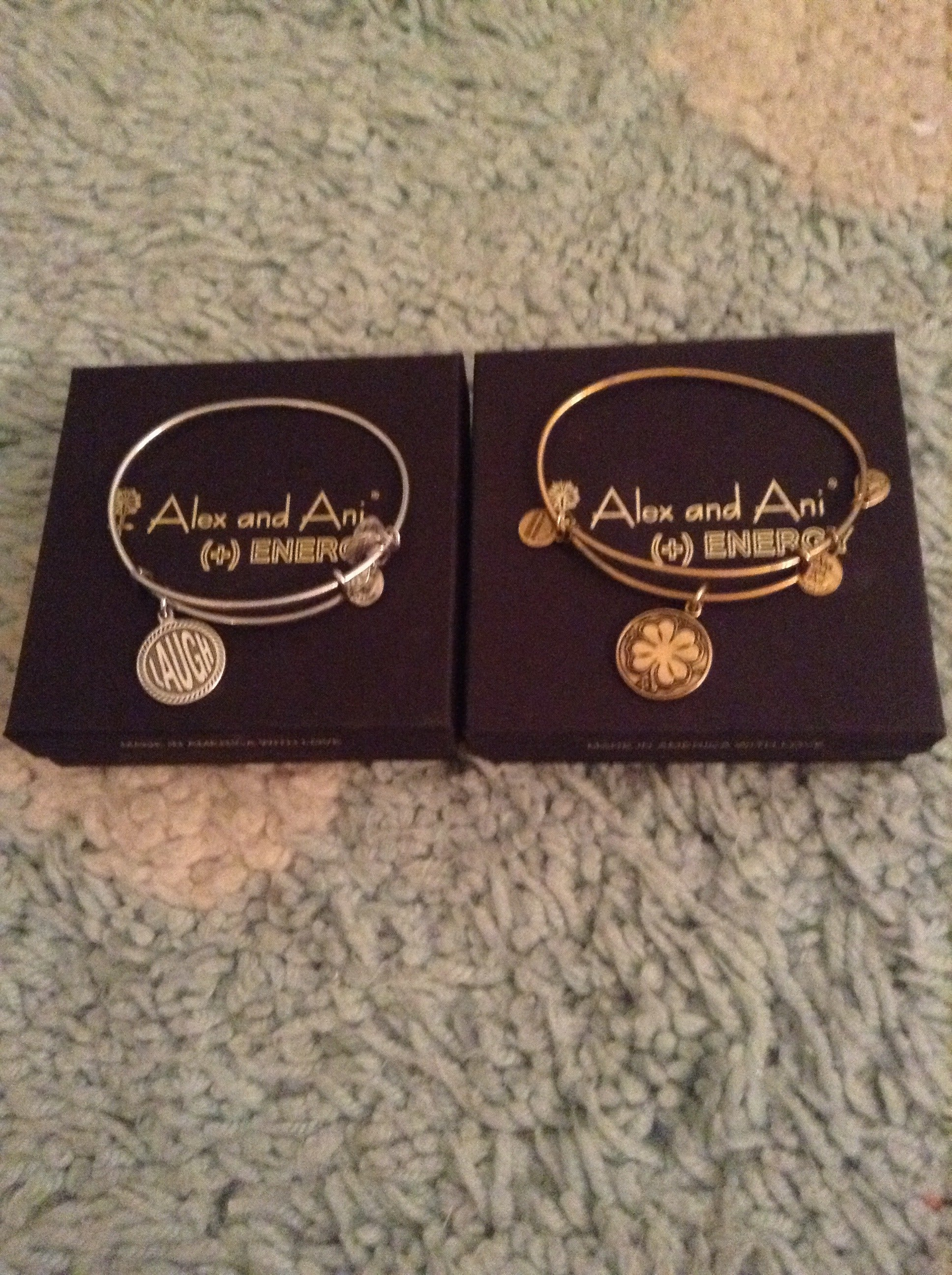 How to Clean Alex and Ani Bracelets 11 Steps