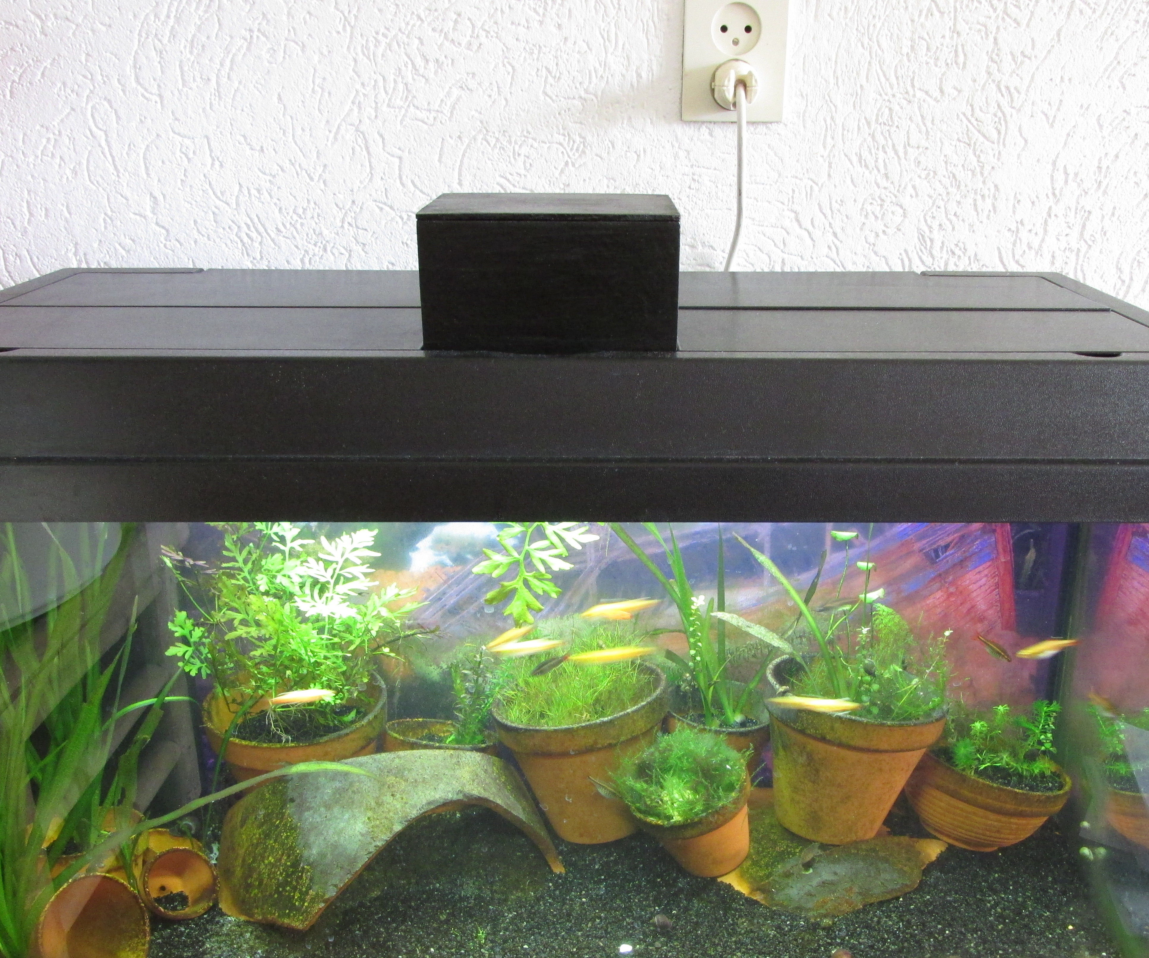 Fish Feeder Arduino Raspberry Pi Link: 7 Steps (with Pictures)