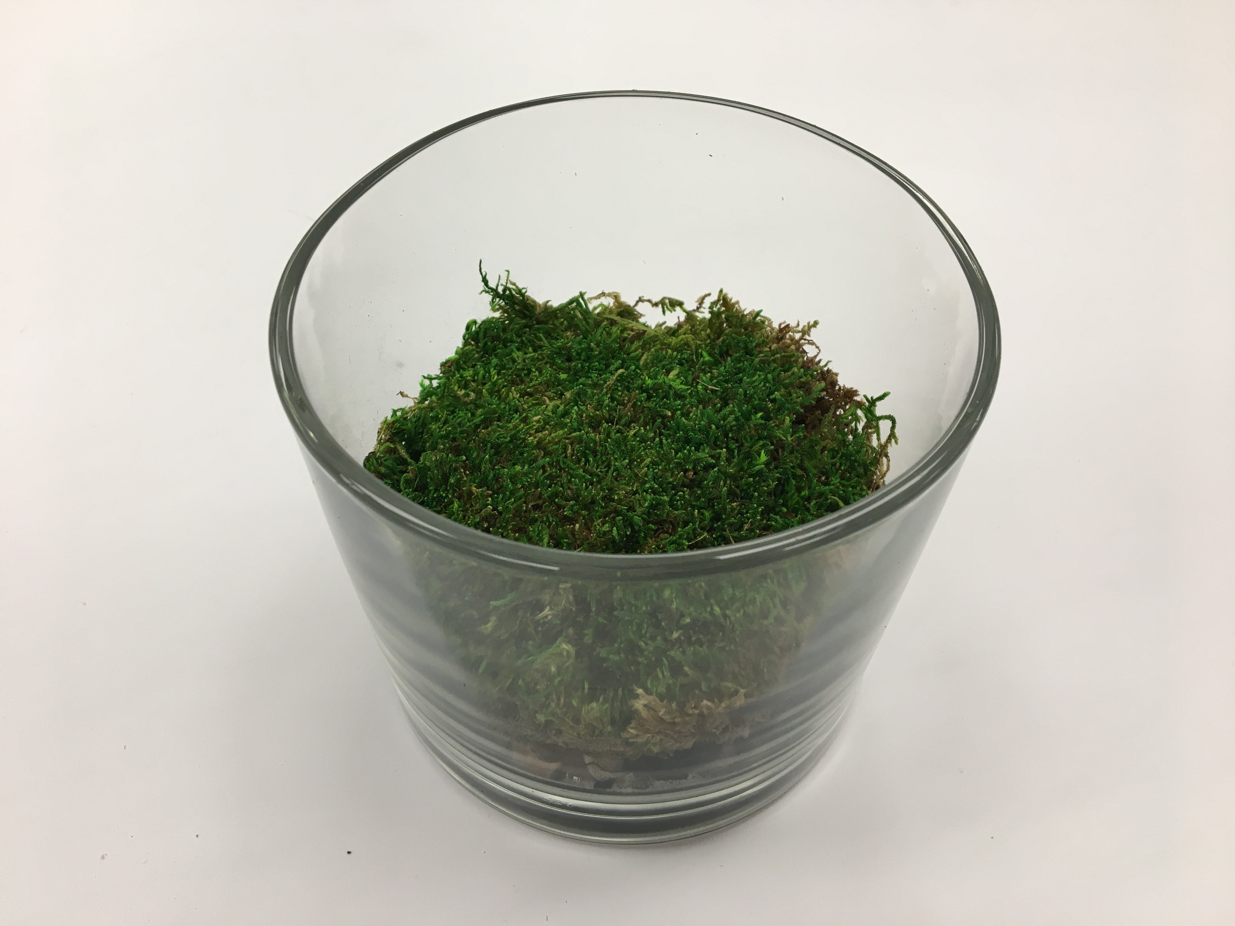 Picture of Layer Three - Moss (Optional)