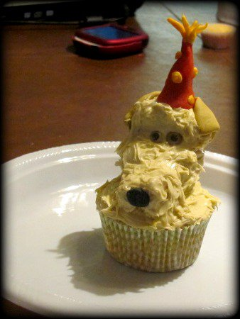 Picture of Herb the Blonde Lab Birthday Cupcake