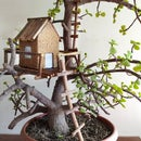 Bonsai Mini Lighted Rustic Tree House