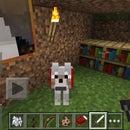 Wolf Training Minecraft P.E!