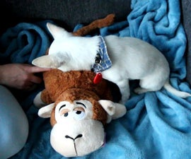 An RFID Dog Toy with Sounds