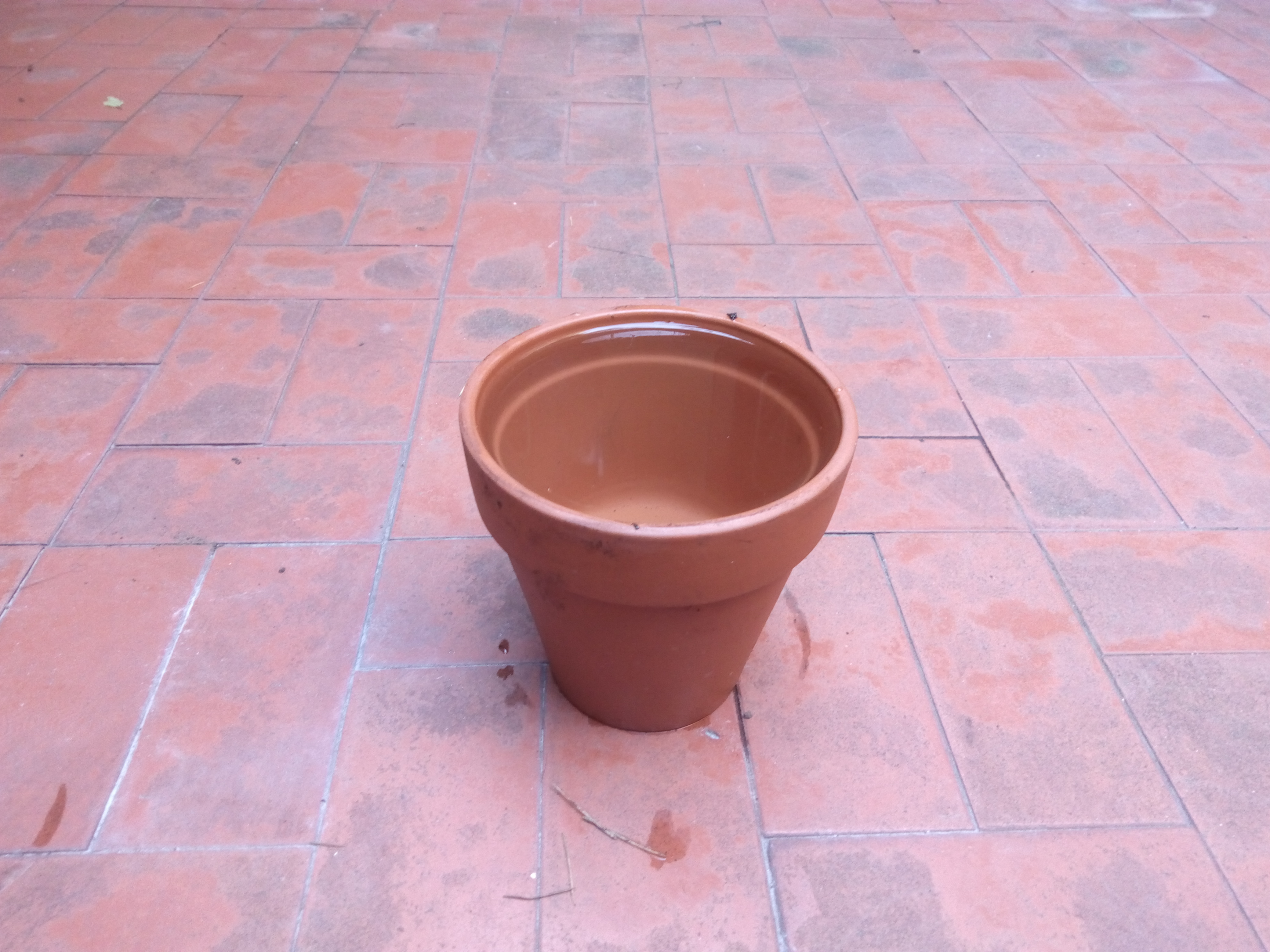 Picture of Probar La Permeabilidad Del Recipiente