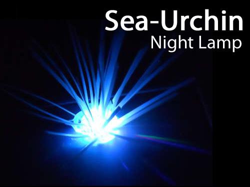 Sea-Urchin Night Light!