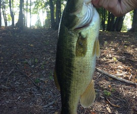 Guide to Fresh Water Fishing