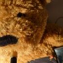 DIY #4 Bear BoomBox - The Teddy Speaker Bear