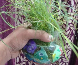 Indoor Gardning With Colourful Artifacts and Pebbles