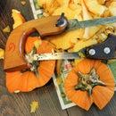 Pumpkin Carving Saws