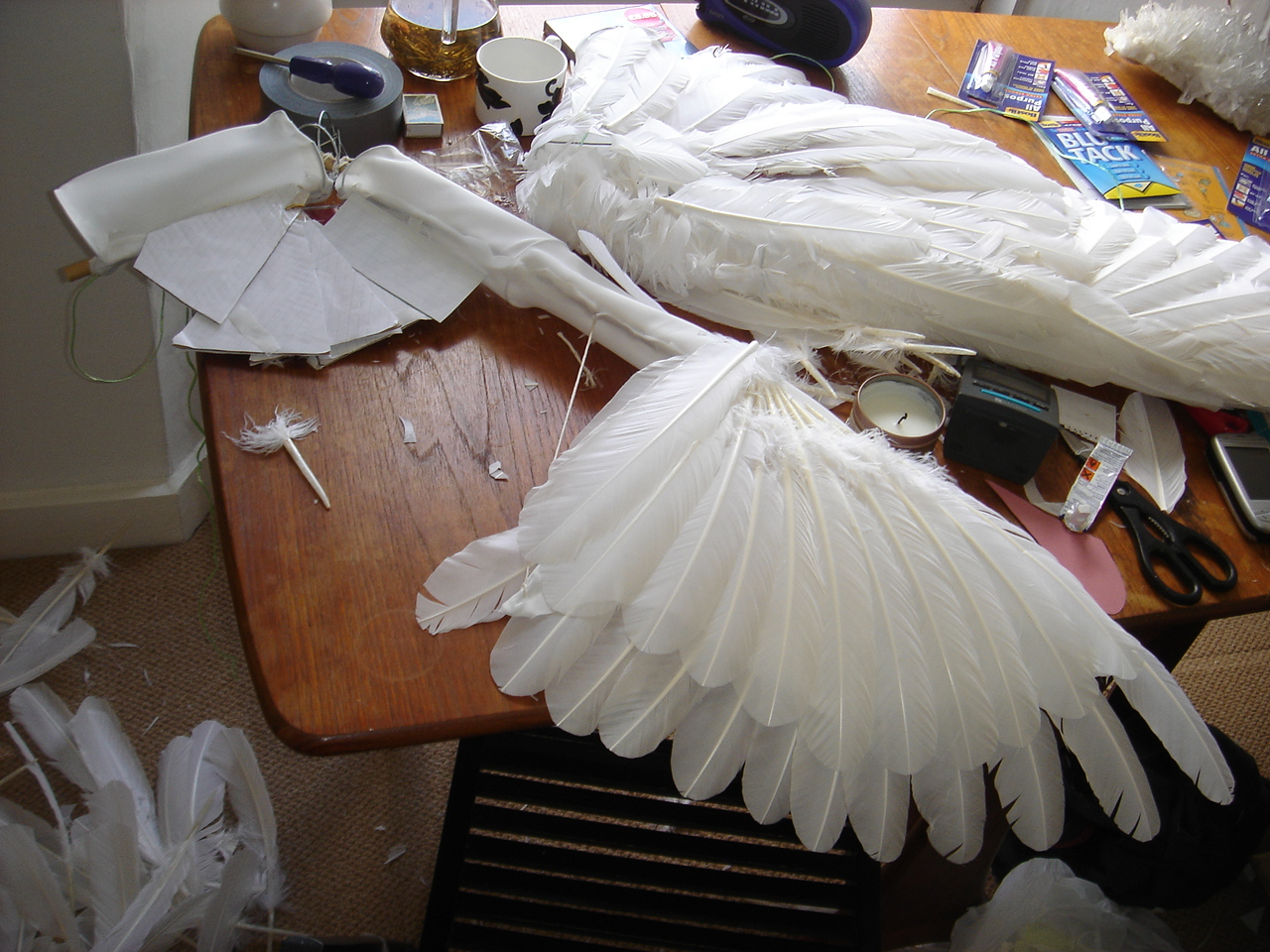 Picture of Feathers 2