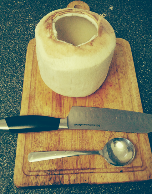 Picture of Prepare Your Ingredients: Coconut