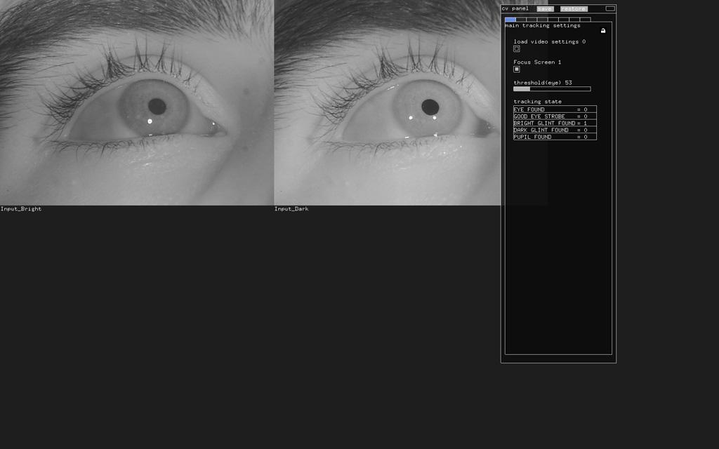 Picture of Using EyeWriter Software - Setup & Tracking Screen