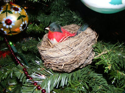 Feathered Friend Christmas Ornament