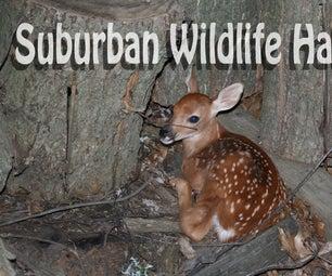 Suburban Habitat for Animals in the Wild