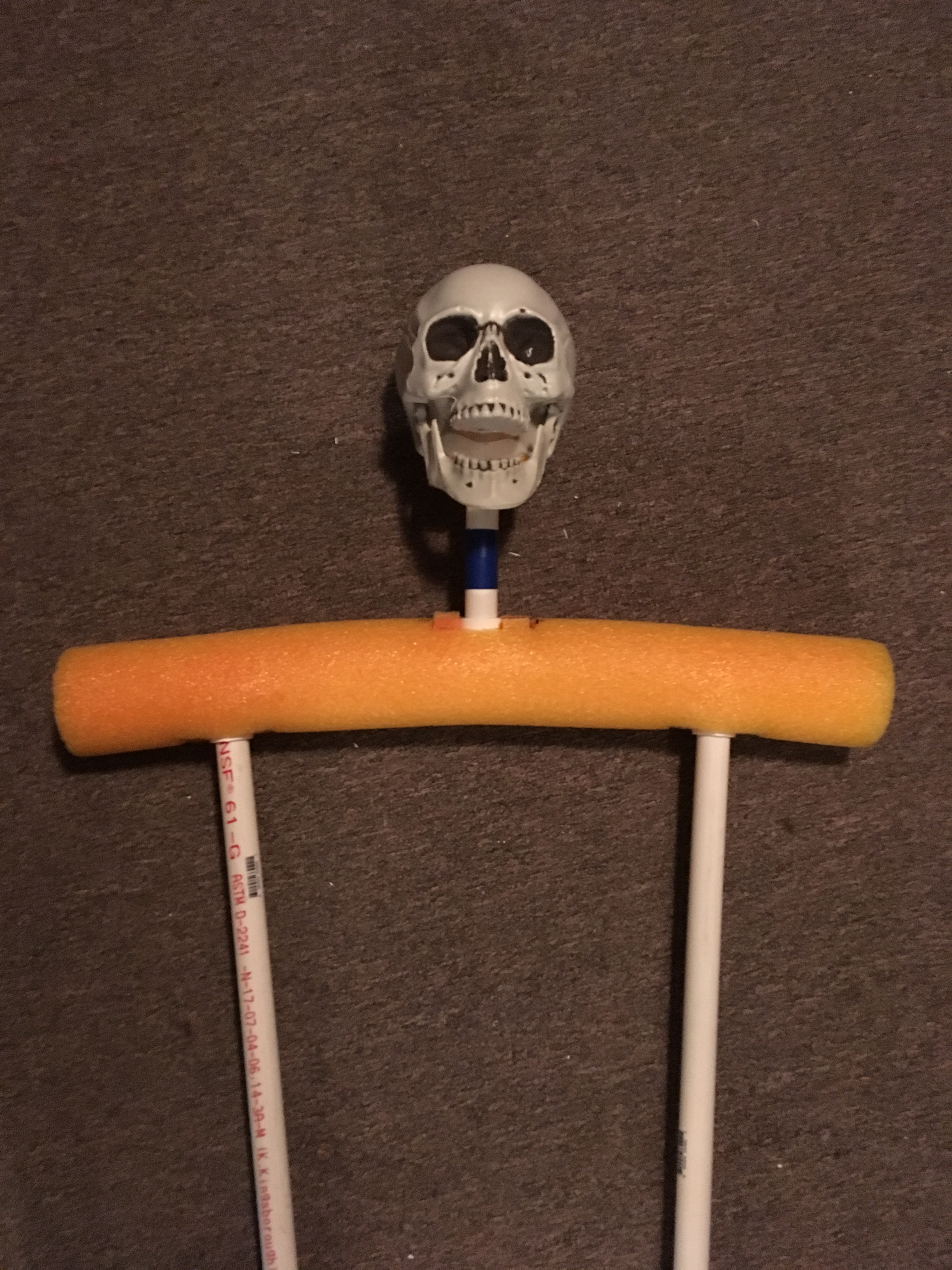 Picture of Grim Reaper (Head and Neck)
