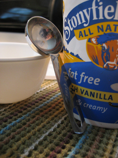 Picture of Make Your Own Yogurt