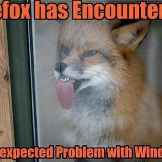 Firefox_Windows_Problem.jpg