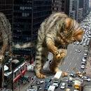 cat_astrophic