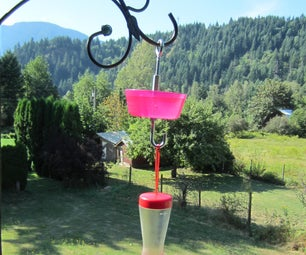 Ant Moat for a Hummingbird Feeder