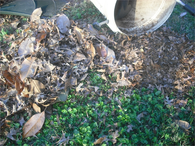 Picture of Easy Leaf Grab and Mulch