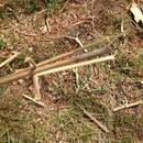 Spear/ Arrow