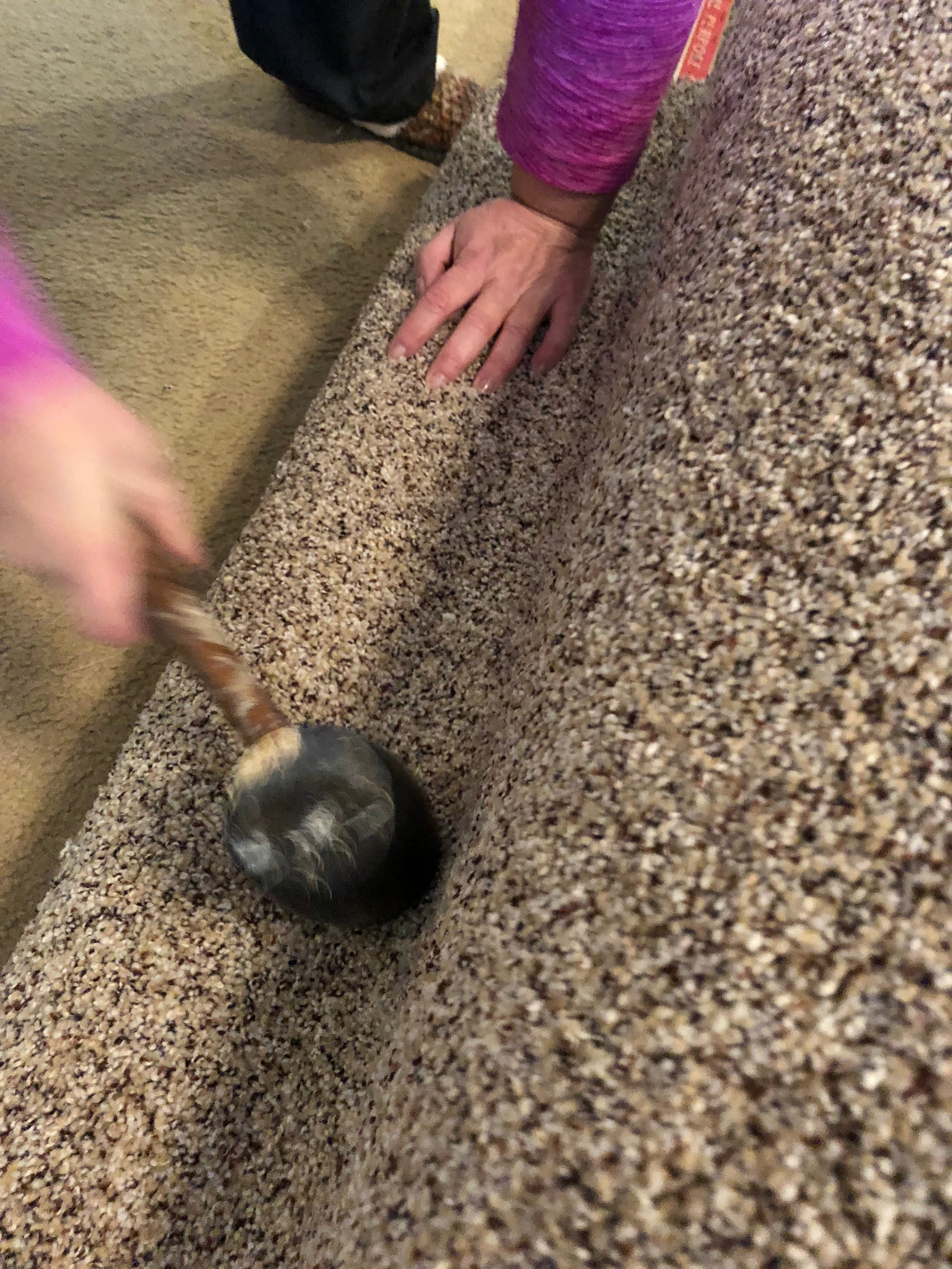 Picture of Install Carpet