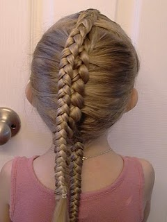 Picture of Braid Hair