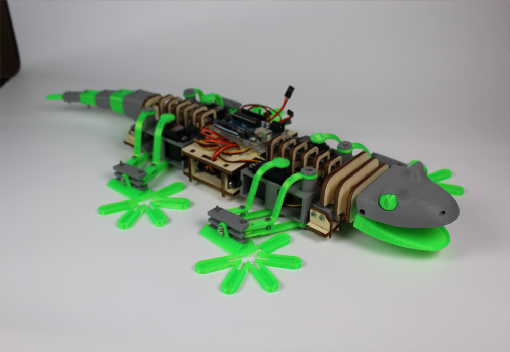 Picture of Bioinspired Wall Climbing Robot (Without Electronics, Not Finished)