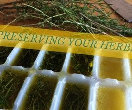 Preserving Herbs - in olive oil