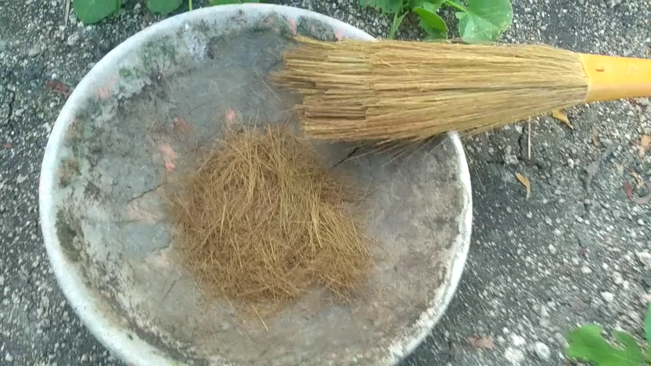 Picture of Preparation of Soil