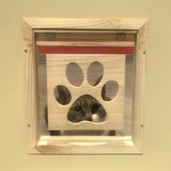Picture of Indoor Pet Flap