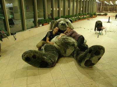 Filling the Bear and Having Fun